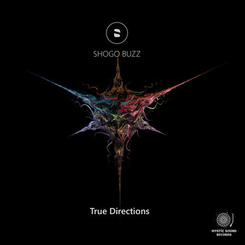 Shogo Buzz – True Directions