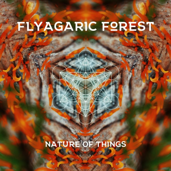 Flyagaric Forest – Nature Of Things